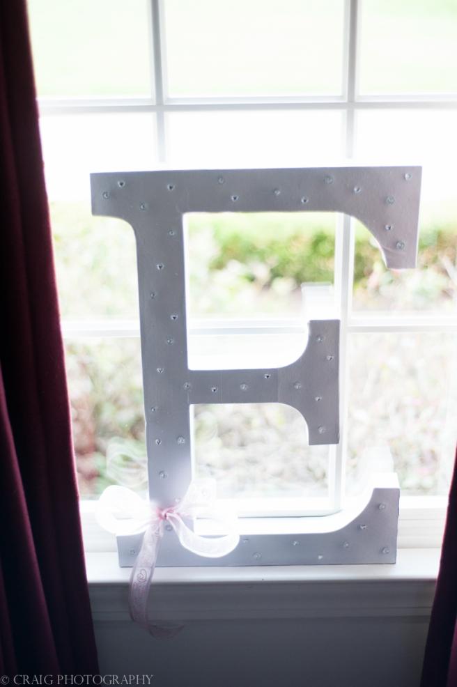 Edgeworth Club Sewickely Weddings-0001