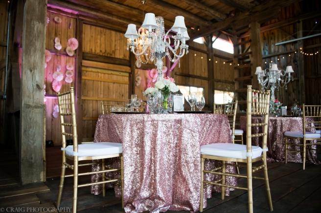 Rustic Acres Farm Weddings Volant Pittsburgh-0008