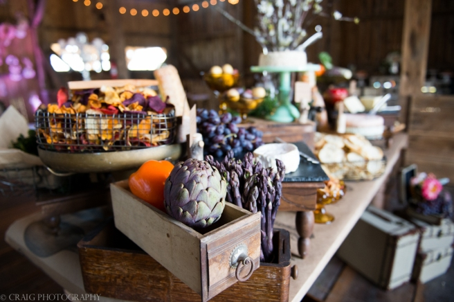 Rustic Acres Farm Weddings Volant Pittsburgh-0012