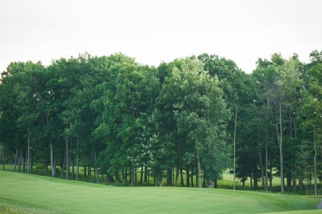Nemacolin Woodlands Resort Weddings-27