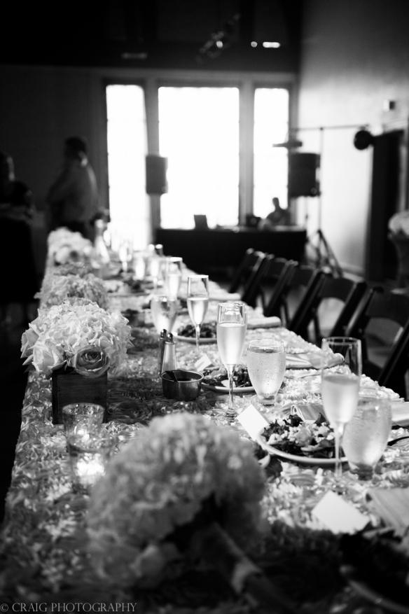 The Capitol Theater Weddings Wheeling WV-0088