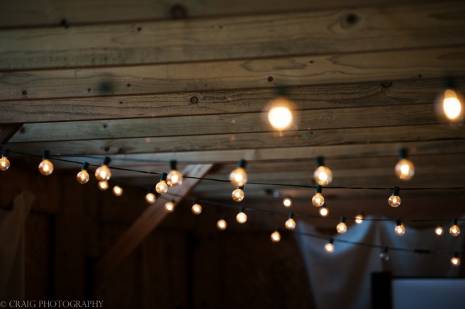 Churchview Farms Weddings Pittsburgh-0077