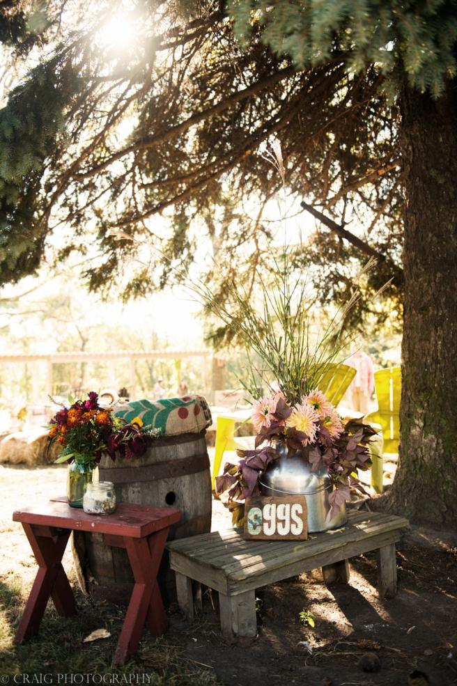 Churchview Farms Weddings Pittsburgh-0095