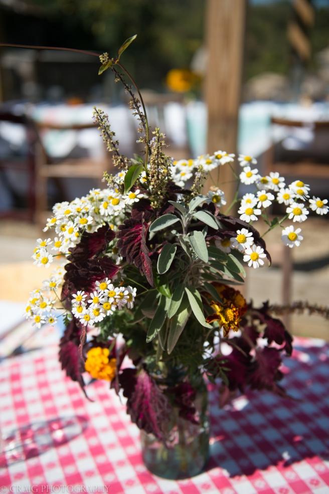 Churchview Farms Weddings Pittsburgh-0164