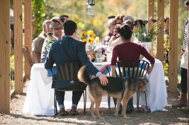 Churchview Farms Weddings Pittsburgh-0193