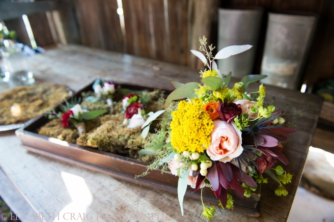Shady Elms Farm Weddings and Receptions Elizabeth Craig Photography-0073