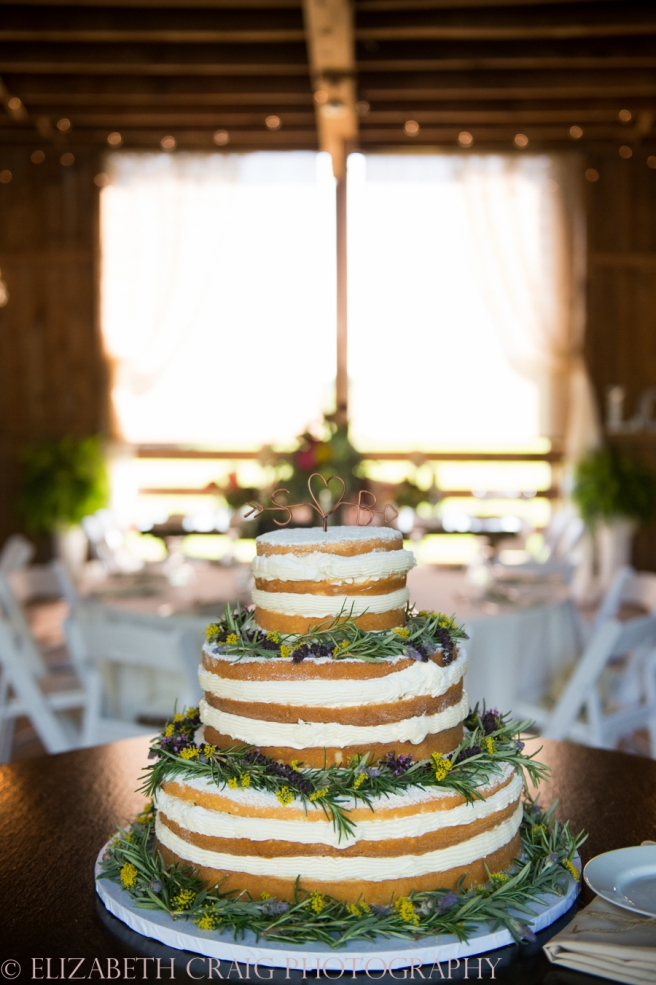 Shady Elms Farm Weddings and Receptions Elizabeth Craig Photography-0088