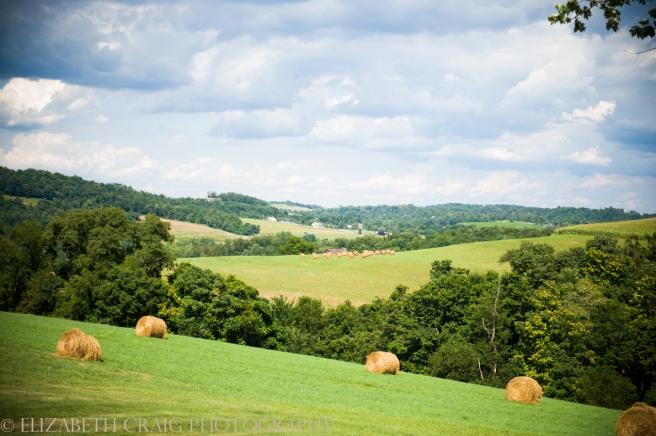 Pittsburgh Rustic Farm Weddings-0089